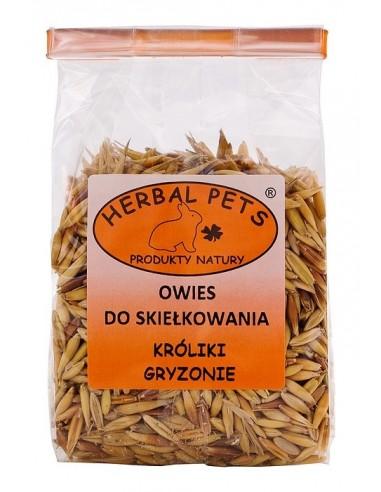Owies do skiełkowania 100g, Herbal Pets